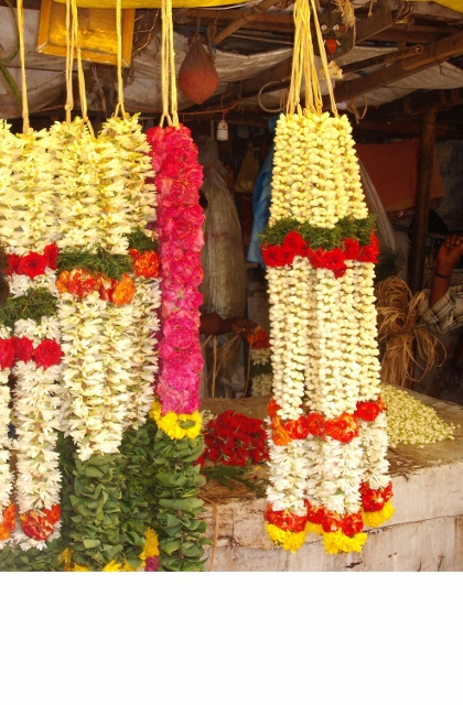 FLOWERS IN TAMIL CULTURE (1/4)