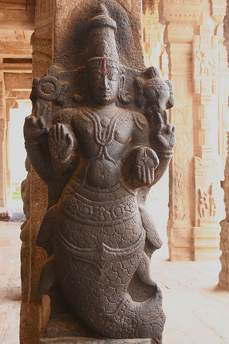 Turtle God Tamil And Vedas