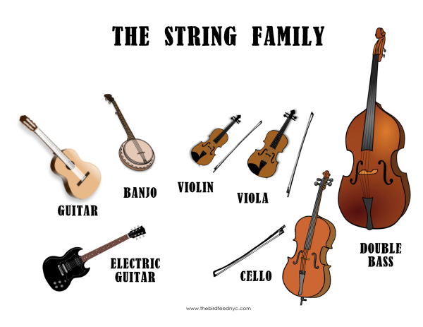 The-String-Family-The-Bird-Feed