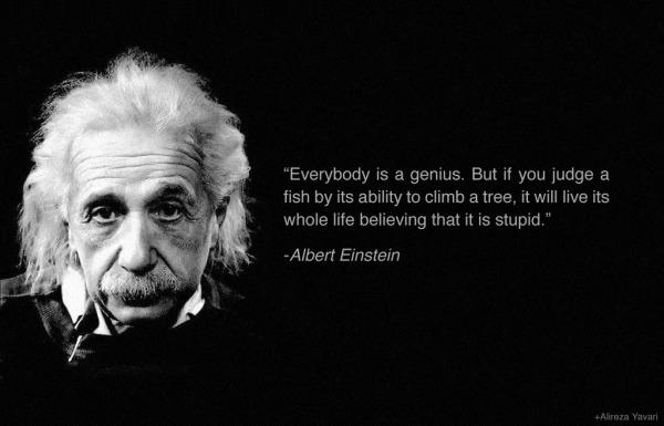 everybidy-is-a-genius