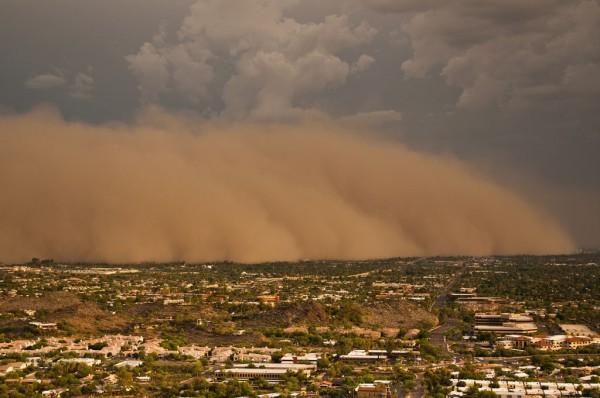 sandstorm10 (1)OZ