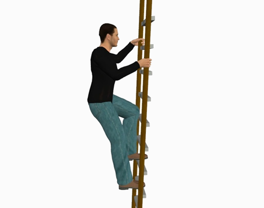 ladderVocational-