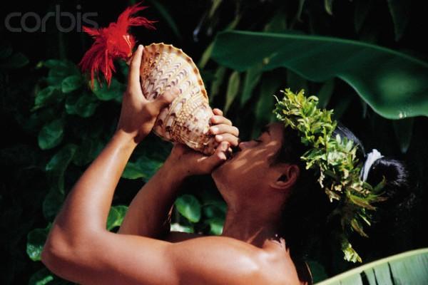 Polynesian Man Blowing Conch Shell