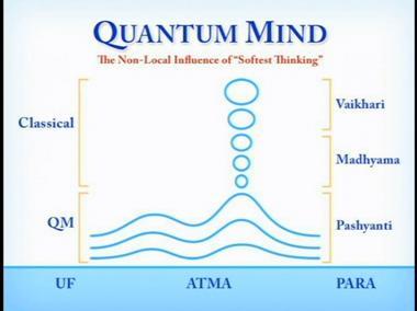 quantum mind2