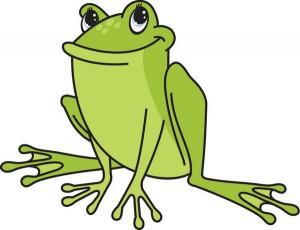 frog-300x230