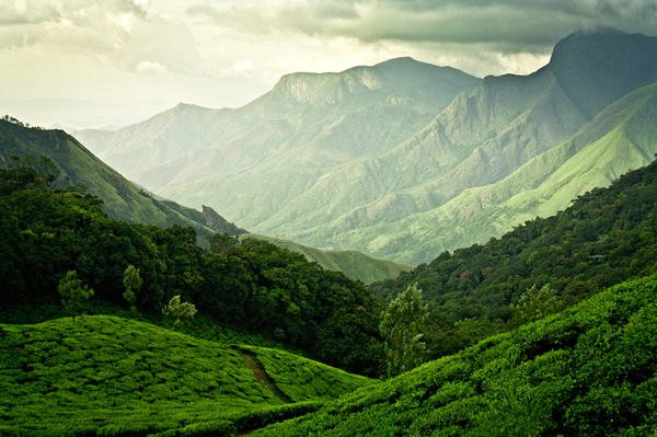 gods_own_country_kerala_09