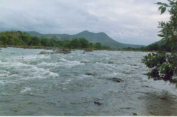 Riverkaveri