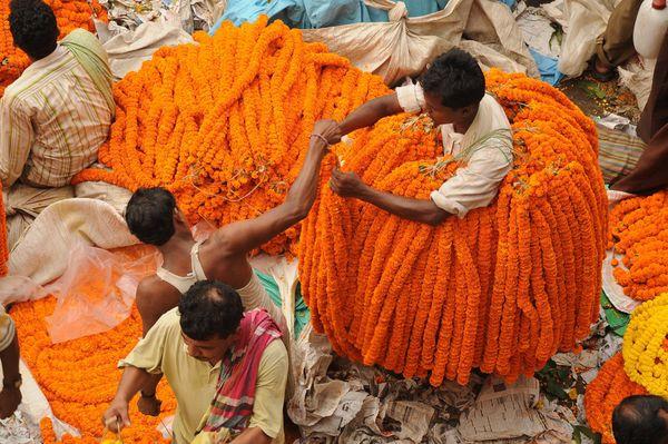 flower-vendor-kolkata-