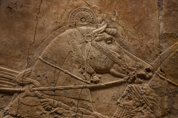 meso chariot horse, British-Museum-161