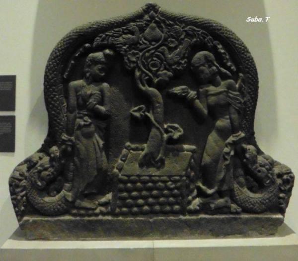 parijatha,V&A,By T Suba
