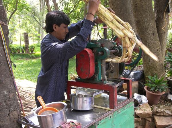 sugarcane machine1