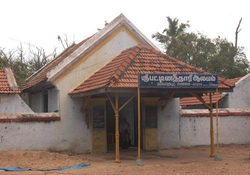 patti.temple