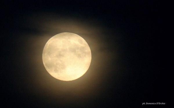 moon_harvest_