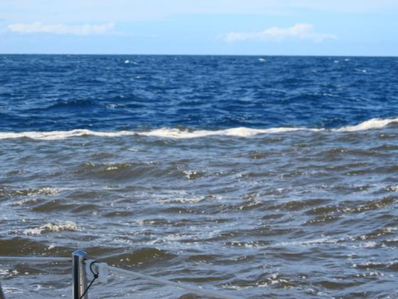20120222 Water change near Ballina