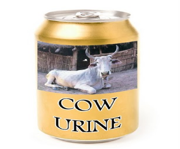 cow urine cola