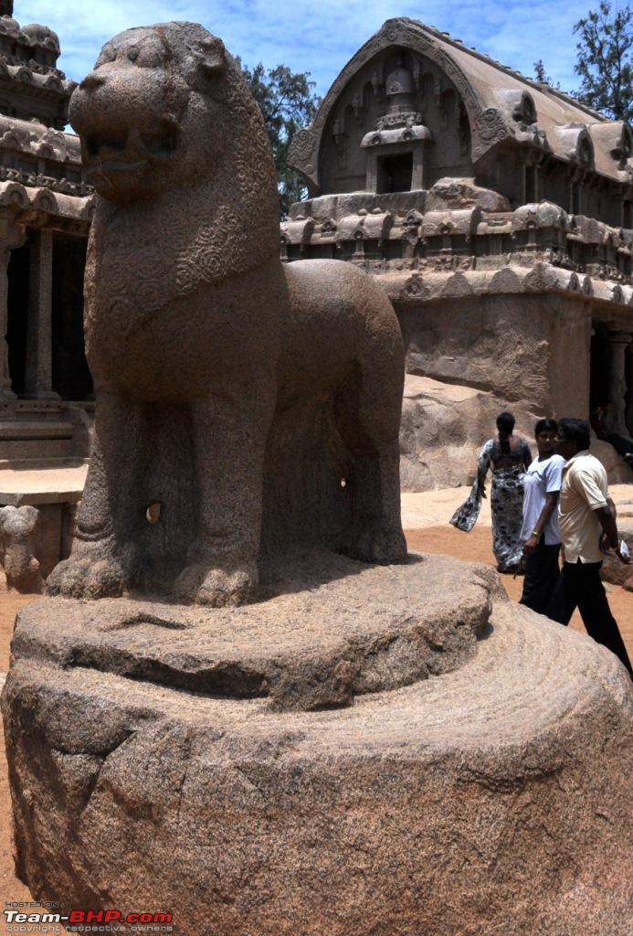 Lion seems to be symbol of Pallava Dynasty