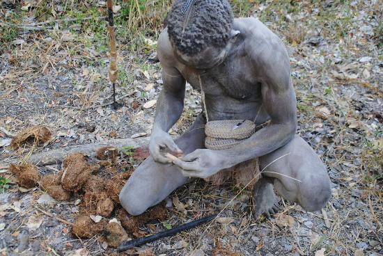 selous-game-reservesmoking elphant poo