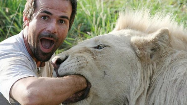 386100-the-lion-whisperer