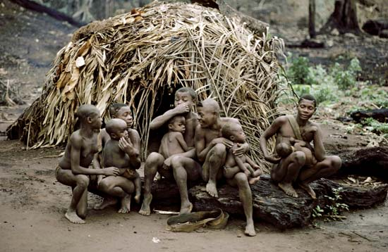 pygmies of central africa