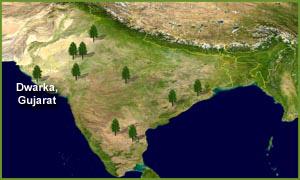 Dwarka-Map_small