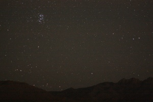 Pleiades-star-cluster
