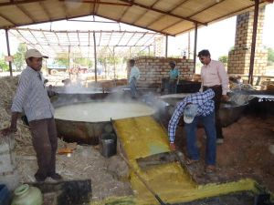 the-boiled-sugarcane-
