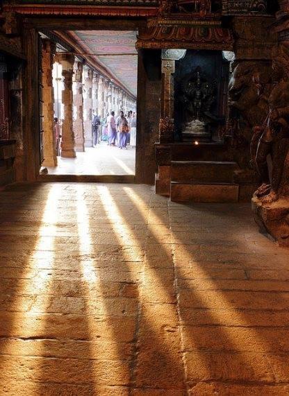 sunlight meenakshi