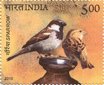 India-Stamp1713-Sparrow