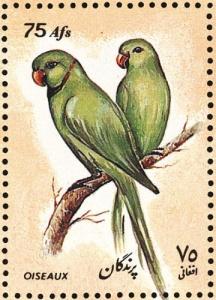 Afghanistan-stamp790parrots