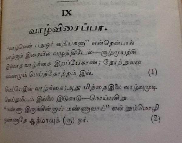 IMG_6371 (2) - Copy