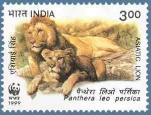 India-stamp5886asiatic-lion-lioness