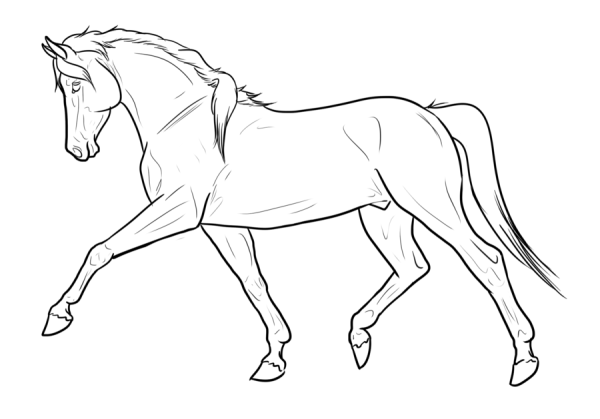 free_horse_lines_by_s1088-d4rfsuo
