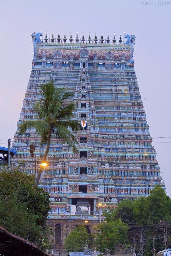 SRIRANGAM WITH TREES