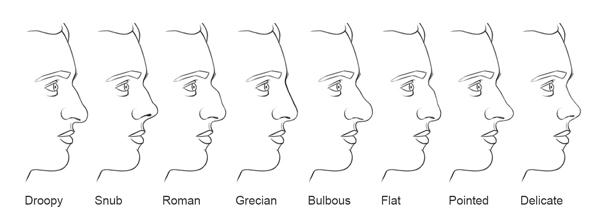 nose types
