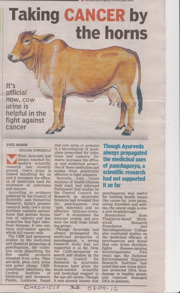 Cow-Urine-Article