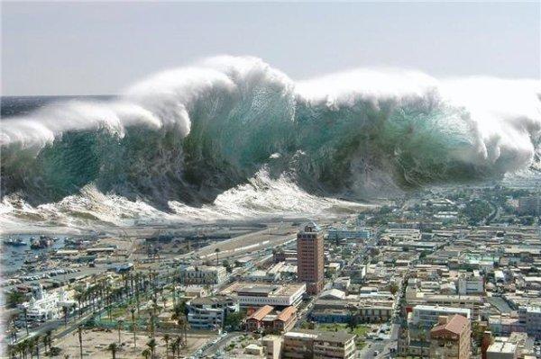 tsunami snake