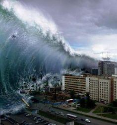 tsunami snake2