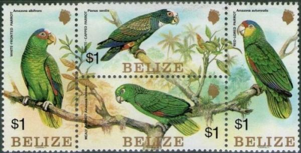 belize_1984_parrots