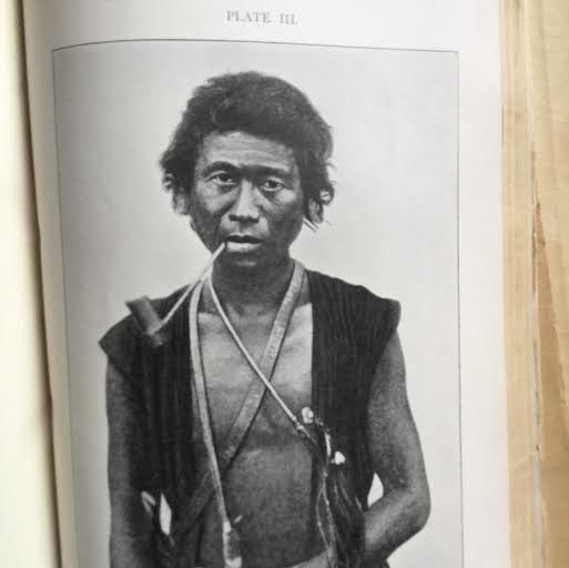 tribe 6