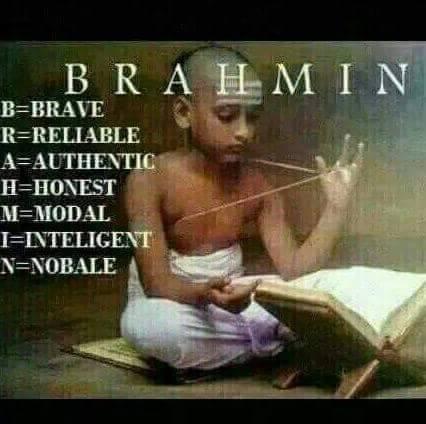 definition of brahmin