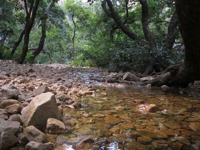 sabari ashram