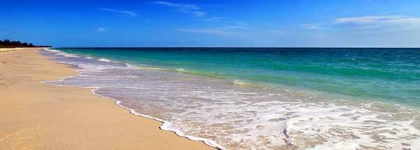 stony-beach-resized