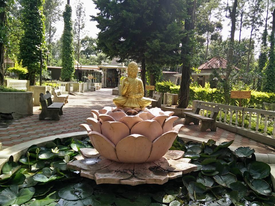 buddha-erkadu