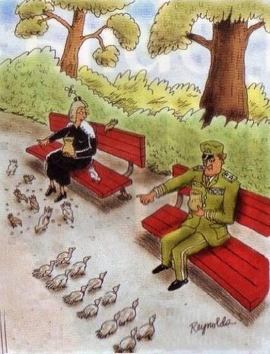 militarydisciplinehatsoff_6e0bb0_4398712