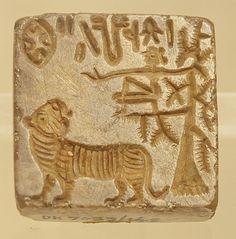 tiger-seal