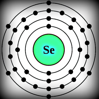 Selinium in sperm apologise, but